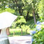 日傘‗おしゃれ